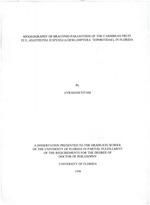 Biogeography of braconid parasitoids of the Caribbean fruit fly, Anastrepha suspensa (Loew) (Diptera: Tephritidae), in Florida