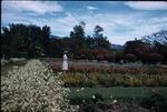 A woman standing in a flower garden at Hope Botanical Gardens