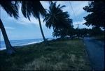 A road along the seaside on the East coast of Jamaica