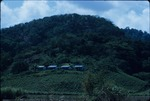 Mountainside homes on the West coast of Jamaica