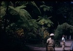 Two men in the Castleton Botanical Gardens in Saint Mary, Jamaica