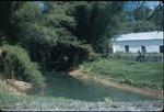 A river at the Good Hope Plantation