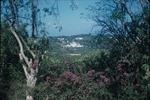 The terrace of the Blairgowrie Hotel, Montego Bay, Saint James, Jamaica