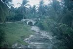 Road bridge near a fruit farm in Saint Ann, Jamaica