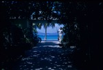 A Caneel Bay Hotel employee carrying brooms down a path