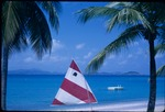A main sail flanked by coconut trees in Saint John, Virgin Islands