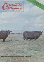 "1945 Dallas Texas City View 14/""x11/"" Photo Cowboy herds his cattle Vintage"