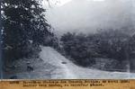 Sentier vers Dondon, au carrefour Menard. Avril. 1930