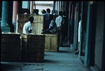 Workers in Downtown Port-au-Prince