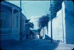 Residential back road in Trinidad