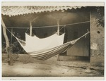 Mosquito net sewed to a hammock