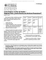 Como Realizar un Plan de Gastos -- Segundo Paso: ¿Como Guarda sus Archivos Financieros?