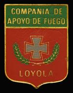 Fire Support Co., Battalion 2000 Beret Badge