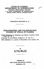 Stratigraphic and paleontologic studies of wells in Florida