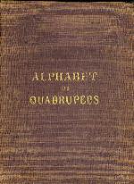 An alphabet of quadrupeds
