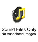 Howard T. Odum: Audio files