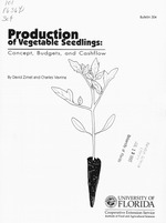 Production of vegetable seedlings
