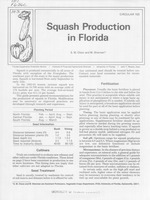 Squash production in Florida /