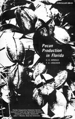Pecan production in Florida