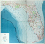 State of Florida, 1989