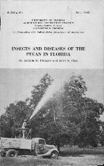 Insects and diseases of the pecan in Florida