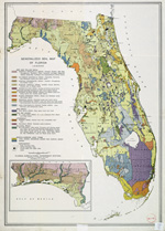Generalized soil map of Florida