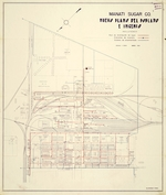 Neuvo Plano del Poblado e Ingenio. Manati Sugar Company