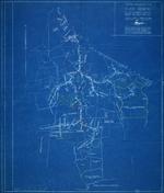 Plano General de las Colonias y Vias Ferreas del Central Elia