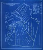 Plano de la Situacion de los Ocupantes de las Fincas, la Caridad y San Joaquin y Loreto, Lo Que Se Detalla en Cada Figura y en el Estado Superficial Descriptivo en el Margen Superior Derecho Inserto