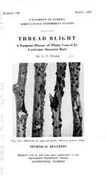 Thread blight