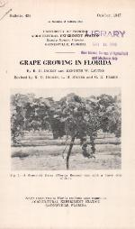 Grape growing in Florida