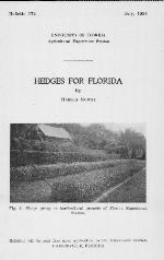 Hedges for Florida