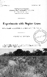 Experiments with Napier grass
