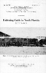 Fattening cattle in north Florida