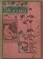The Life of a bear