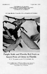 Purple scale and Florida red scale as insect pests of citrus in Florida