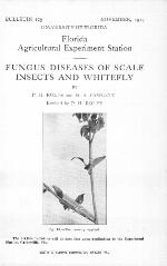 Fungus diseases of scale insects and whitefly