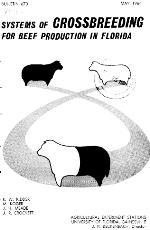 Systems of crossbreeding for beef production in Florida