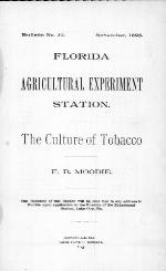 The culture of tobacco