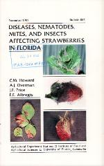 Diseases, nematodes, mites, and insects affecting strawberries in Florida