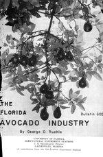 The Florida avocado industry