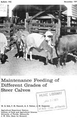 Maintenance feeding of different grades of steer calves