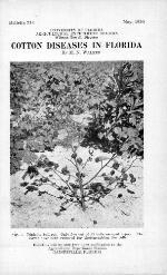 Cotton diseases in Florida