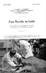 Urea toxicity in cattle