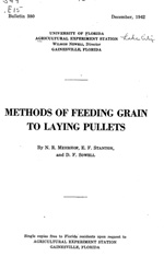 Methods of feeding grain to laying pullets