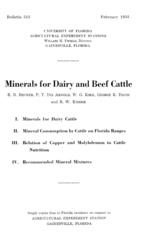 Minerals for dairy and beef cattle