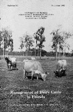 Management of dairy cattle in Florida