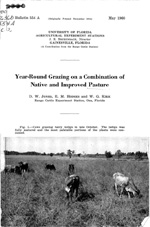 Year-round grazing on a combination of native and improved pasture
