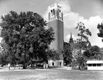 University of Florida's Century Tower and University Auditorium behind and temporary building to the right.