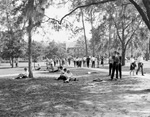 University of Florida students walking, standing, and sitting on the Plaza of the Americas.